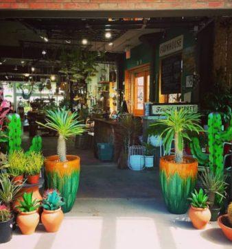 Ruibals Plants Of Texas